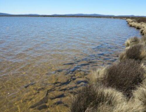 Polaroiding in the Nineteen Lagoons