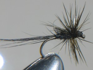 Black smut trout fly